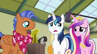 "Shining Armor ""this has been great"" S7E3"