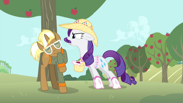 """File:Rarity """"Why don't you go ask her yourself?"""" S4E13.png"""