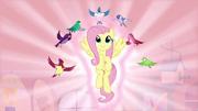 Fluttershy rediscovers her destiny S03E13