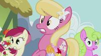 Flower ponies in shock S5E9