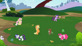 Rainbow Dash's friends playing with their pets S2E07.png
