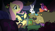 """Fluttershy """"this is what I call a perfect"""" S5E21"""