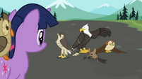 Twilight sees the flyers S2E07