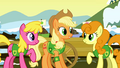 Applejack with Cherry & Golden S1E11.png