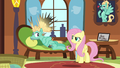 Fluttershy not buying Zephyr's act S6E11.png