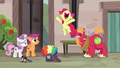 Apple Bloom overjoyed by her brother's crush S7E8.png
