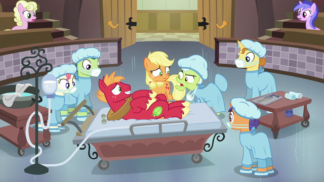 File:Granny Smith surprised to see Big McIntosh S6E23.png