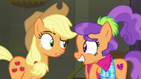 "Applejack ""uh, fabric?"" S6E9"