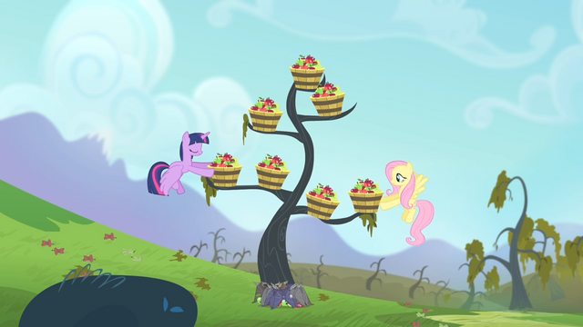 File:Twilight and Fluttershy putting tubs of apples onto the branches S4E07.png