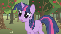 Twilight calls Applejack's name S1E04