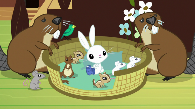 File:Angel and scared animals listen to Fluttershy S7E5.png