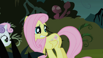Fluttershy looks behind her in fear S1E17