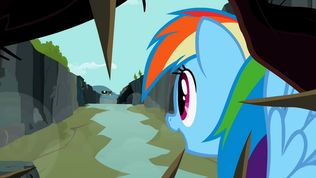 File:Rainbow Dash looking at the flyers S2E07.png