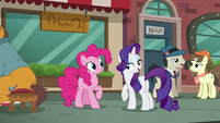 "Rarity ""until you actually get a pouch for Maud"" S6E3"
