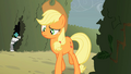 Applejack notices something strange S2E01.png