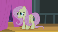 Fluttershy looking out curtains S4E14