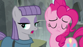 "Maud Pie ""what do you think, Boulder?"" S7E4.png"