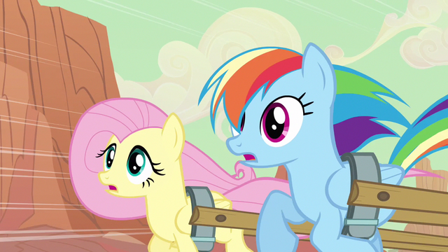 File:Rainbow Dash & Fluttershy see risk S2E14.png