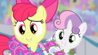 "Apple Bloom and Sweetie Belle ""what"" S4E05"