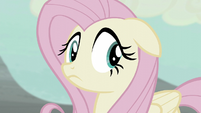 Fluttershy looks around nervously S5E02