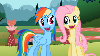 Rainbow and Fluttershy smile S2E07.png