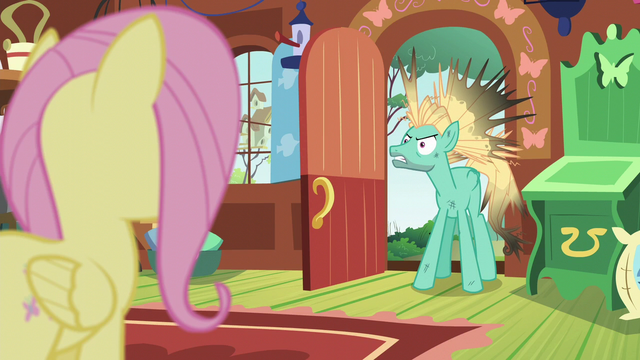 "File:Zephyr Breeze ""it's insane!"" S6E11.png"
