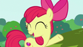"Apple Bloom ""it'll still be fun to drive them"" S6E14.png"