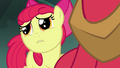 Apple Bloom apologizing to Big Mac S5E17.png