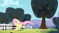 Fluttershy runs away from the seeds being spat on her S4E07