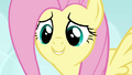 Fluttershy telling Seabreeze not to be mean S4E16.png