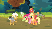 Goldie meets Pinkie and the Apples S4E09