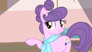 Suri 'from the Ponyville Knitters League' S4E08