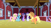 Applejack explains the plan to the Mane 6 S3E9