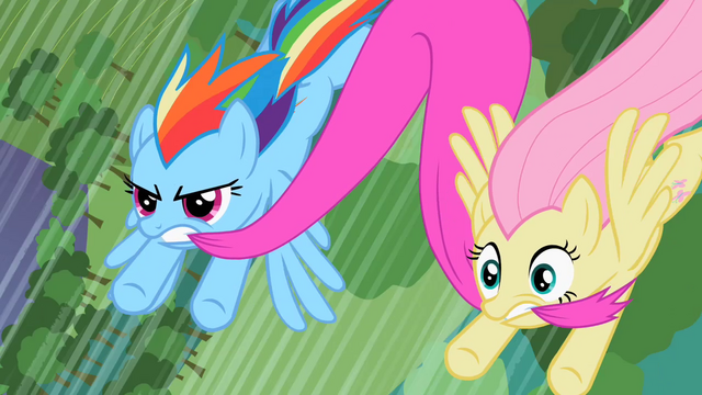 File:Rainbow Dash and Fluttershy try to save Spike and Rarity S2E10.png