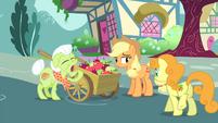 Golden Harvest walking towards the apple cart S4E23