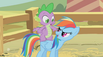 "Rainbow Dash ""Ready for another pony ride?"" S1E13"