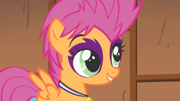 Scootaloo's report S1E18