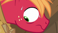 Big McIntosh looking mortified at Sugar Belle S7E8.png