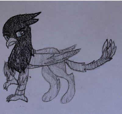 FANMADE Black Griffon OC