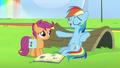 "Rainbow Dash ""I can fall asleep anywhere"" S7E7.png"