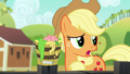 "Applejack ""a list can't really capture"" S6E10.png"