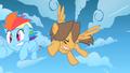 Bully slams into Rainbow Dash S1E23.png