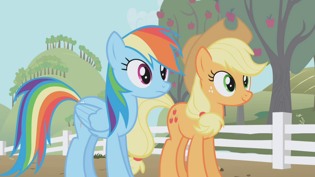 File:Rainbow and Applejack side by side S1E03.png