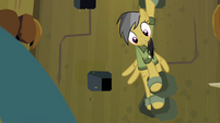 Daring Do with three limbs free S4E04