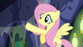 Fluttershy places a spider on the web S6E21.png