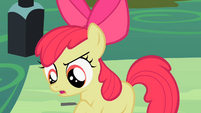 Apple Bloom 'we'll be the' S2E06