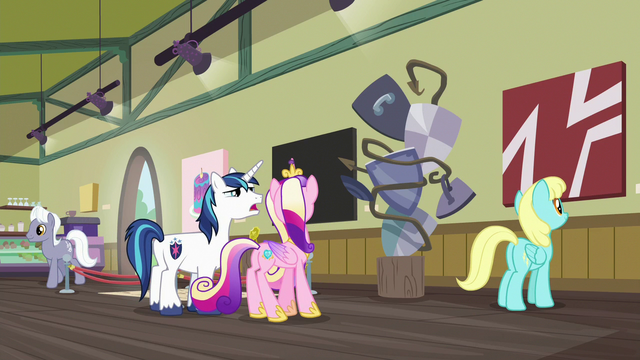 """File:Shining Armor """"is this art or... a mistake?"""" S7E3.png"""