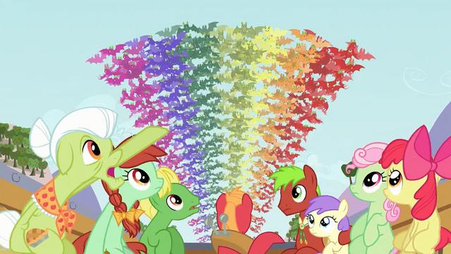 File:Rainbow of fruit bats 2 S03E08.png
