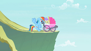 Rainbow Dash saves a foal S2E8.png