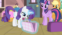 Rarity opens one of her bags S4E08